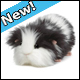 WEBKINZ - COOKIES N CREAM GUINEA PIG - NEW